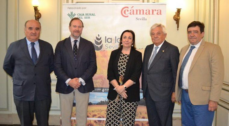 «Andalucía es el mayor productor de trigo duro de España»