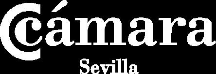 CAMARA_corto_blanco_transparente