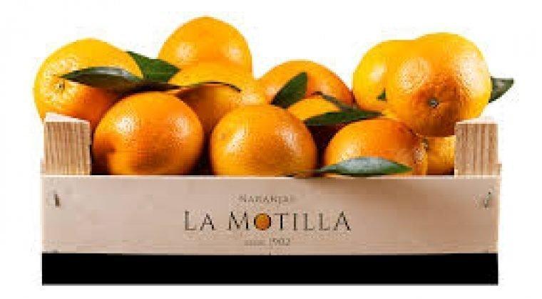 Naranjas la Motilla