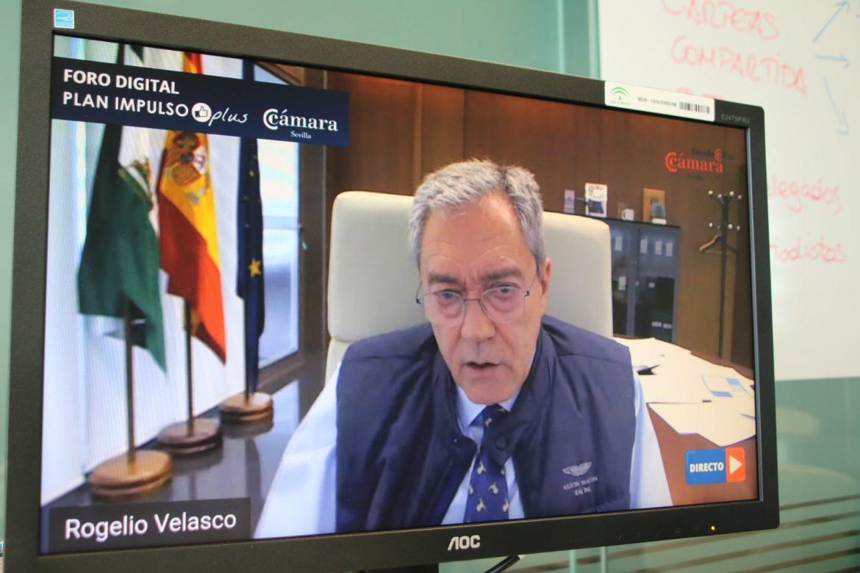El Consejero de Economía participa en Webinar de la Cámara
