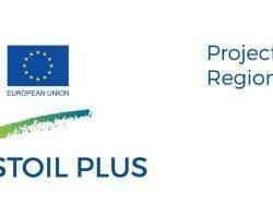 Promover la fabricación y consumo de aceite de oliva